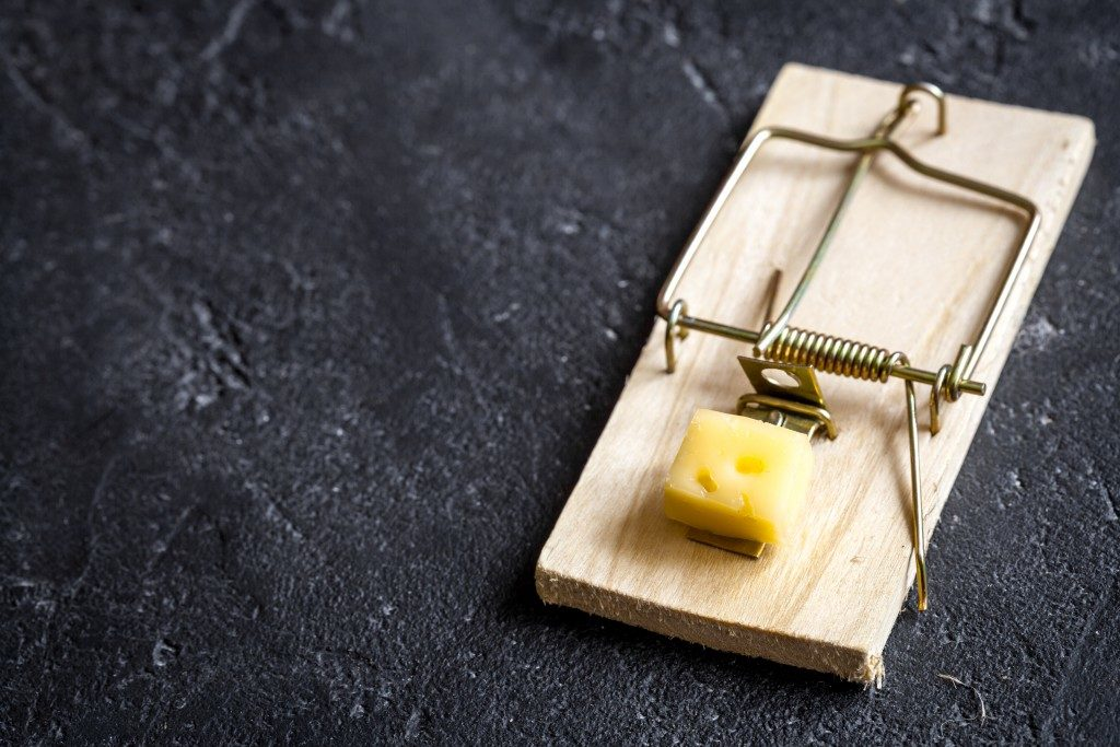 Wooden mousetrap with cheese