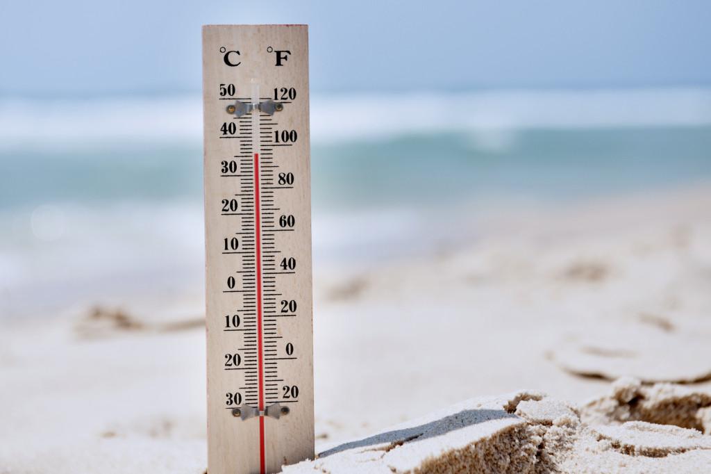 warm temperature