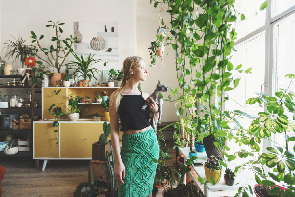 girl staring to a window with many indoor plants around